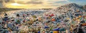 bãi rác ngoài tự nhiên